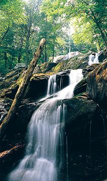 Shenandoah National Park, Luray, Virginia