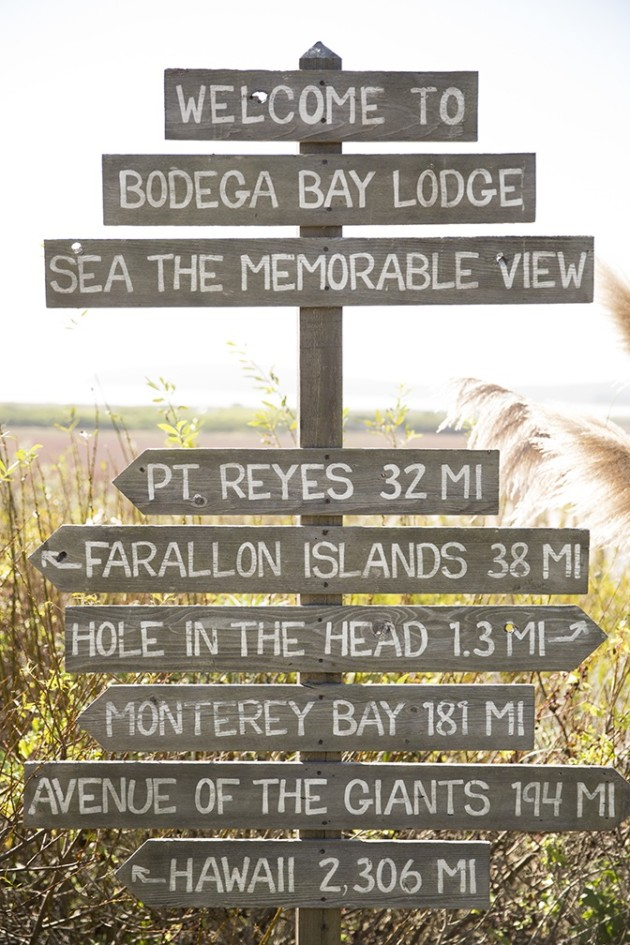 A Perfect 24 hours in Bodega Bay