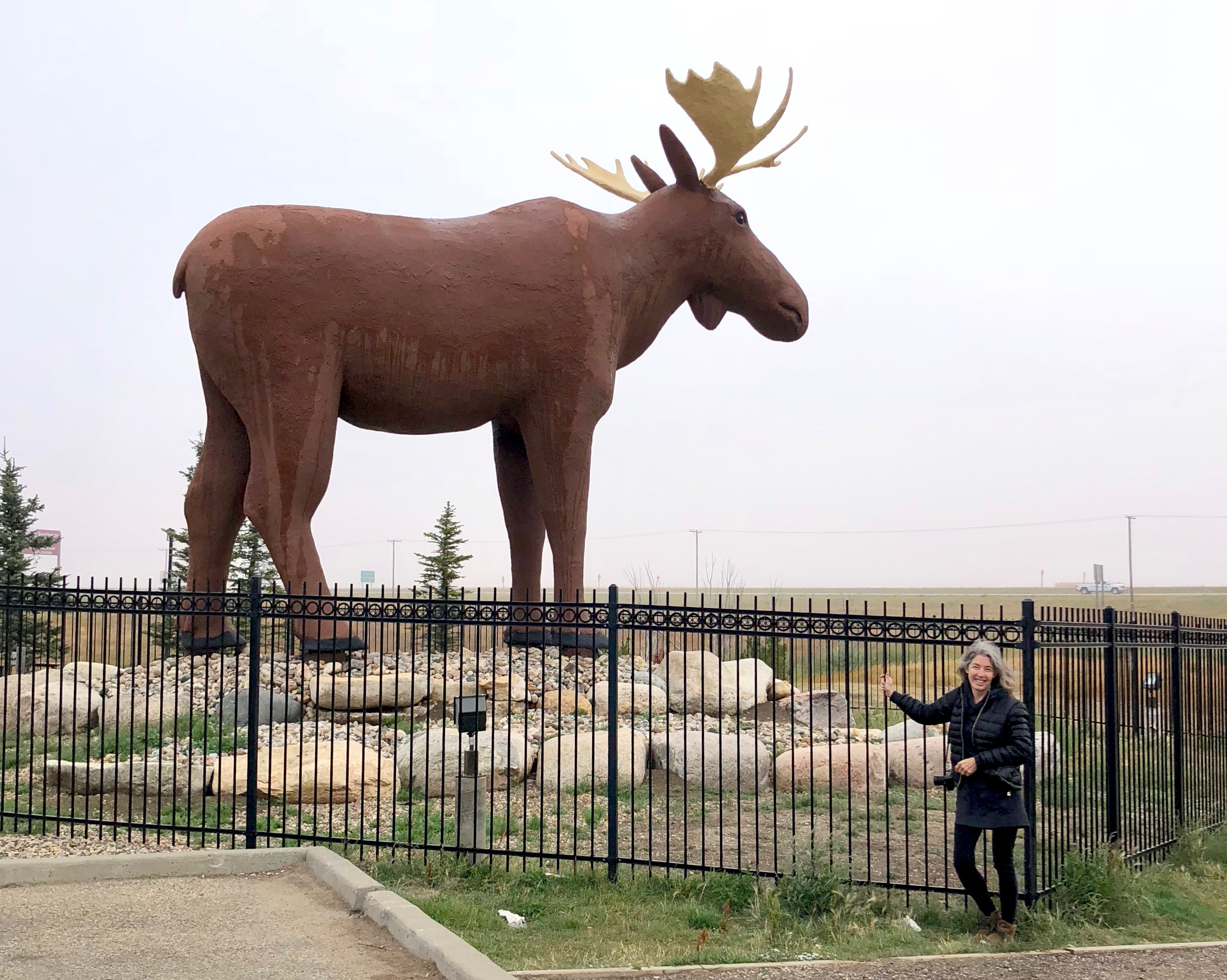 moose jaw, lynn friedman, road trip, moose jaw, statue, saskatchewan, canada,